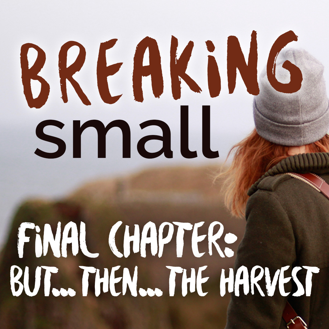 Breaking Small: Part 7